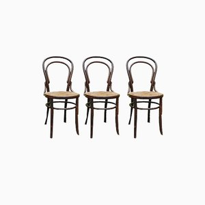 Curved Wooden No. 14 Chairs, Set of 3