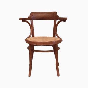 Chaise de Bureau No. 6003 de Mundus Thonet, 1920s