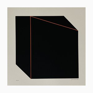 Giancarlo Zen, Illusory Perspective, 1978