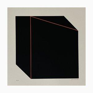 Giancarlo Zen, Prospettiva illusoria, 1978