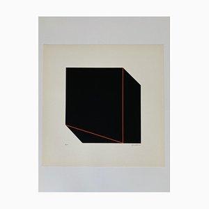 Giancarlo Zen, Illusionäre Perspektive 2, 1978