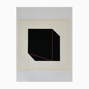 Giancarlo Zen, Prospettiva illusoria 2, 1978