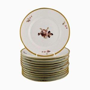 Royal Copenhagen Brown Rose Plates, 1960s, Set of 12