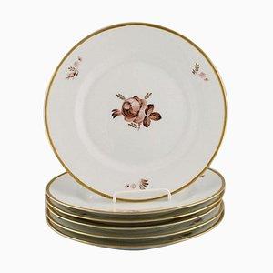 Brown Rose Dinner Plates from Royal Copenhagen, 1960s, Set of 6