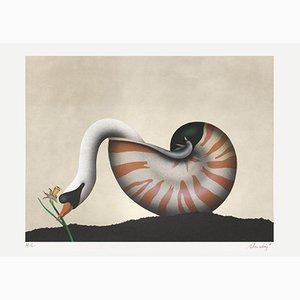 The Swan Narzisse von John Paul Donadini