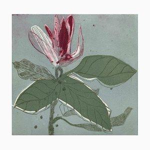 Marta Wakula, Magnolia 10, 2020