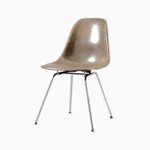 Sedia a conchiglia in fibra di vetro di Charles & Ray Eames per Herman Miller, anni '60