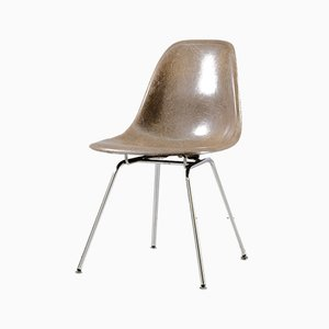 Shell Chair in Fiberglass by Charles & Ray Eames for Herman Miller, 1960s
