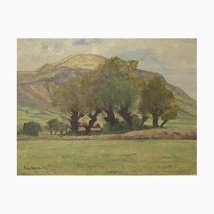 Eugene Moriaud, Paysage à St Pierre de Rumilly, 1903