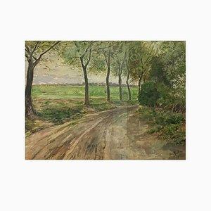 Bruno Müller, Chemin de forêt, 1959