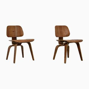 Plywood DCW Chairs by Charles Eames for Evans, 1950s, Set of 2