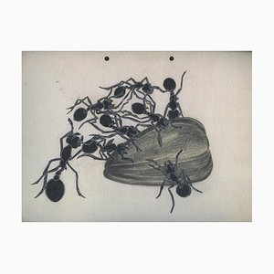 Ivan Lazarov, Ants with Wunflower Seed, 1936