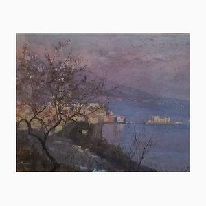 Sofia De Muralt, Die Vesuve Baie de Naples, Via Tasso, 1903