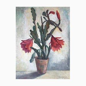 Arne Siegfried, Cactus en fleurs, 1974