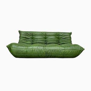 Canapé Togo Vintage Vert Forêt en Cuir par Michel Ducaroy pour Ligne Roset