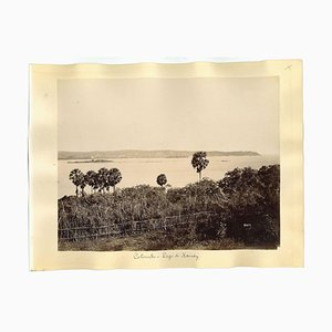 Impressions Albuminées de Colombo, Sri Lanka, 1880s / 90s, Set de 2