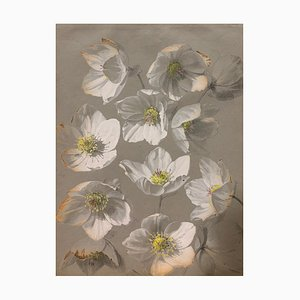 Unknown, White Flowers, Watercolor, 1885