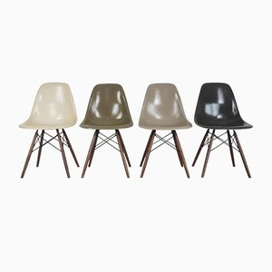 DSW Side Chairs in Grey & Parchment by Charles Eames for Herman Miller, Set of 4
