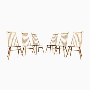 Mid-Century Esszimmerstühle aus Heller Ulme von Ercol Goldsmith, 6er Set