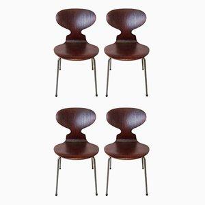 Ameise Esszimmerstühle von Arne Jacobsen für Fritz Hansen, 1950er, 4er Set
