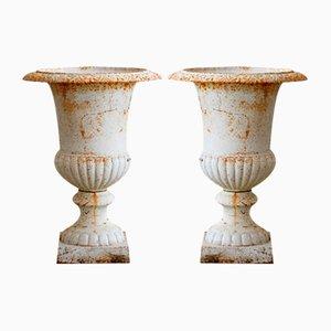 Cast Iron Medici Urns, Set of 2