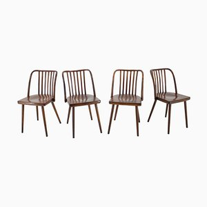 Beech Dining Chairs by Antonin Suman, 1960s, Set of 6