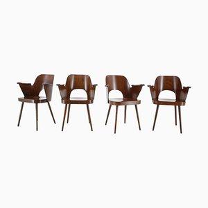 Beech Dining Chairs by Oswald Haerdtl, Czechoslovakia, 1960s, Set of 4