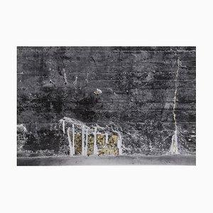 Sophie Bassouls the Walls 2021