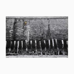 Murs Sophie Bassouls R, 2021,