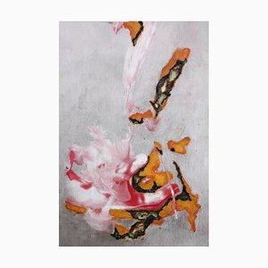 Akira Inumaru, Expérience Dicare 43, 2014