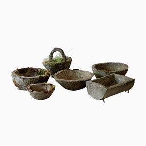 Concrete Planters, Set of 6