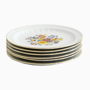Plates with Floral Decoration from Seltmann Weiden, Bavaria, Set of 6
