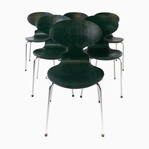Dunkelgrüne Modell 3101 Ant Stühle von Arne Jacobsen für Fritz Hansen, 1960er, 5er Set