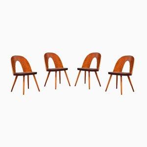 Stühle von Antonin Suman für Tatra Nábytok, 4er Set