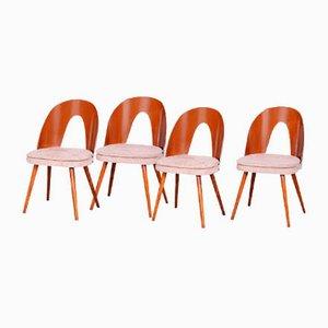 Czech Brown and Beige Chairs by Antonín Šuman, 1950s, Set of 4