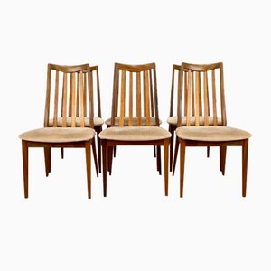 Mid-Century Dining Chairs from G Plan, Set of 6