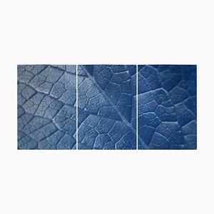 Macro Leaf Triptych in Blue Tones, 2021