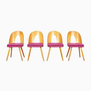 Dining Chairs by Antonín Šuman for Tatra, Set of 4