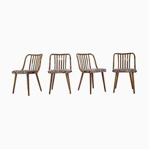 Beech Dining Chairs by Antonin Suman, 1960s, Set of 4
