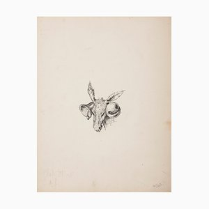 Unknown, Donkey with Bells, Original Drawing in Pen, Early 20th Century