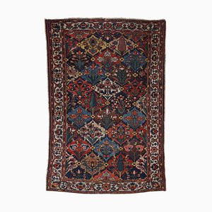 Floral Old Bakhtiari in Beige with Border and Fields Pattern