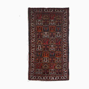 Bakhtiari Rug in Dark Red with Patterns and Borders