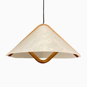 Scandinavian Pendant Lamp, 1950s