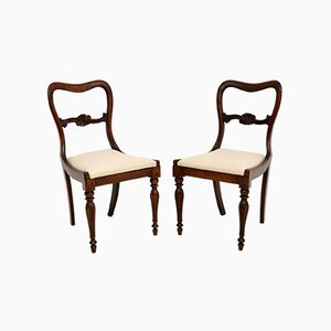 Antique William IV Side or Dining Chairs, Set of 2