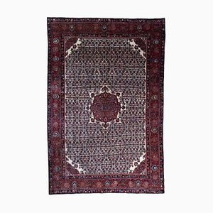 Middle Eastern Rug