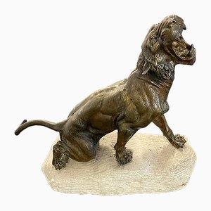 Bronze Lioness Sculpture by Thomas Cartier