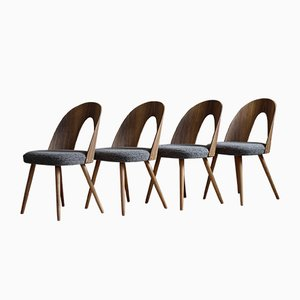 Mid-Century Dining Chairs in New Kvadrat Fabric by A. Šuman, Set of 4