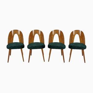 Dining Chairs by Antonín Šuman for Tatra, 1960s, Set of 4