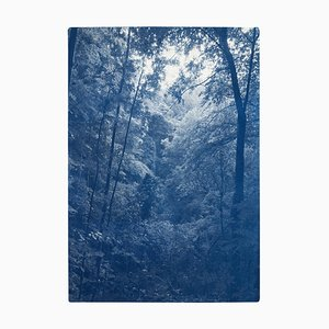 Soft Light in the Woods, Handmade Cyanotype Print Depicting Forest Landscape with Blue Tones, 2021