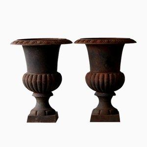 Large Cast Medici Urns, Set of 2